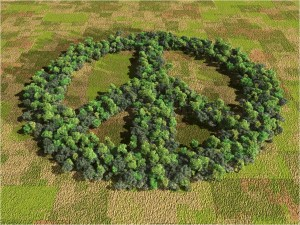 peace-earth-cropcircle