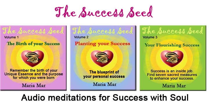 success-seed-banner-horizontal-L72