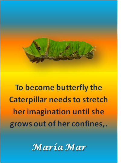 artspiration-60-caterpillar-growth