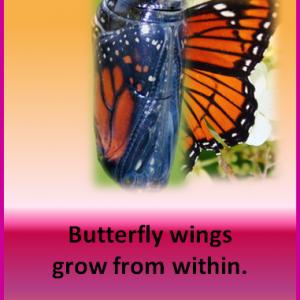 Prayer: Help me grow wings