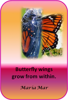 ARTspiration No. 59-Butterfly Wings Grow from Within
