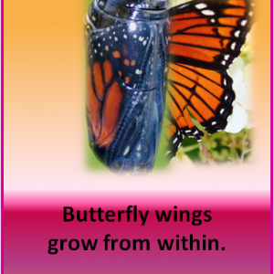 Prayer: Help me grow wings